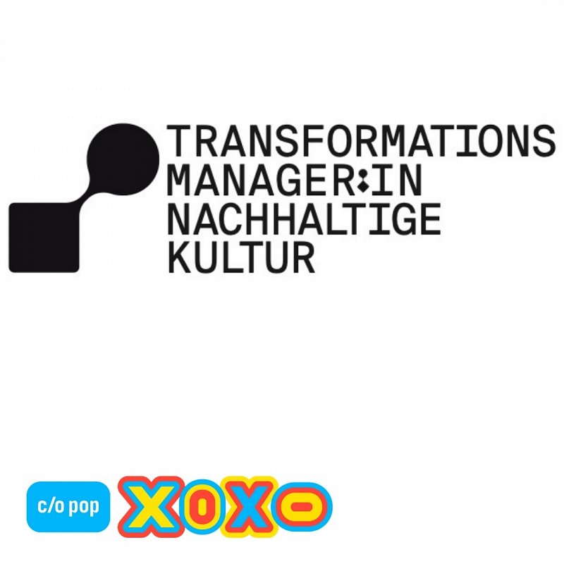 Transformation Manager Sustainable Culture